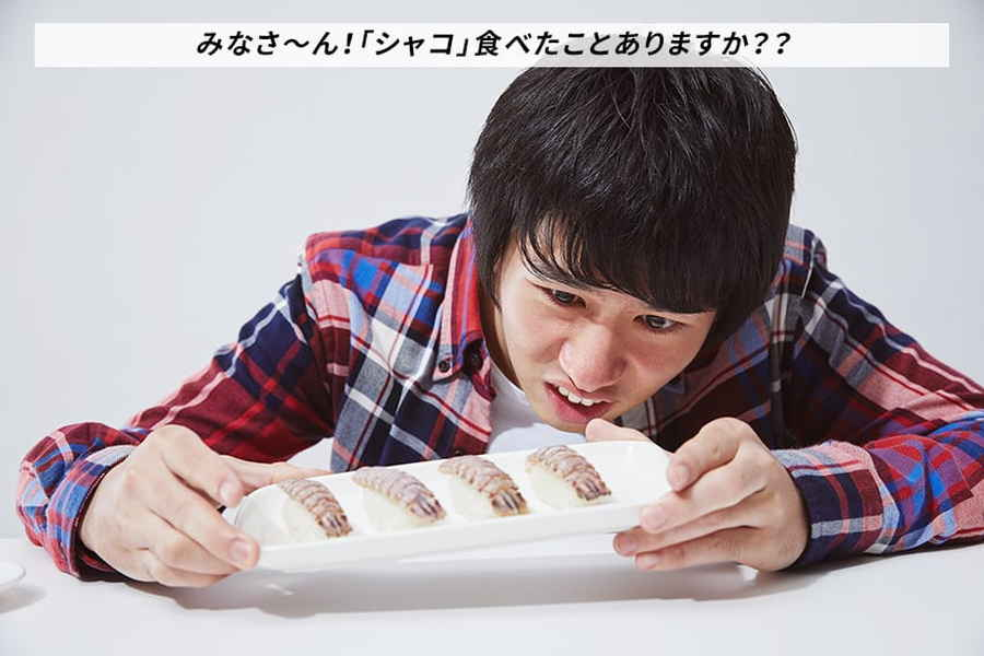 シャコ食べたことない人限定】シャコのお寿司をはじめて食べた感想をメールで送るバイト